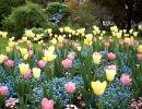 Jardín de Luxemburgo  París