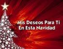Mis Deseos Para Ti En Esta Navidad