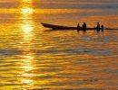 La belleza de Manaus y la selva Amazónica