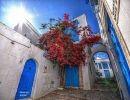 Pequeño Tour por Túnez