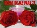 Rosas rojas para ti