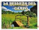 La Belleza Del Campo