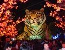 Festival de los Faroles en China