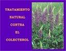 Tratamiento natural contra el Colecterol