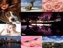 Cóctel de fotos 4 parte