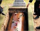 Cuando Yo muera