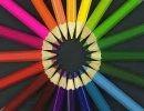 Diseño Color  Variado