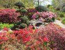 Los jardines de Haute – Bretagne