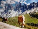 Bellos Lugares de Italia