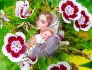 Primavera con María – Ave María