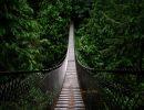 Puentes que derriban obstáculos
