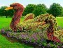 Esculturas hechas con flores