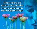 Gotas de sabiduría 8