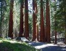 Imágenes del mundo: Parque nacional Sequoia