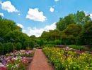 Cantigny Gardens Usa