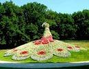Arcen Garden  Nederland