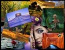 Un collage de fotos