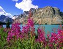 Banff Bationakl Park 4 Canada