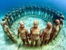Bellezas Bajo el Mar