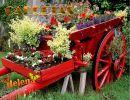 Carretas con Flores