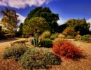 Beth Chatto Gardens England