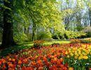 La primavera besaba (de Antonio Machado)