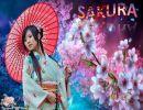 Sakura (Flor del cerezo)