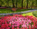 Paseando por el jardínKeukenhof, Holanda