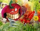 Mundo de hortalizas