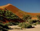 Namib – Naukluft Natiomnal Park Namibia