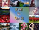 Cóctel De fotos 31