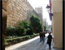 Sevilla caminando por mi ciudad