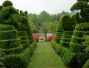Ladew topiary gardens  USA