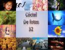 Cóctel De fotos 32