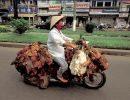 Ciclomotores muy bien aprovechados