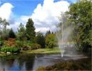 Parque Queen Elisabeth Vancouver Canada