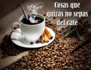 Cosas que quizás no sepas del café