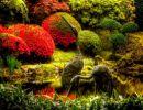 Portland japanese garden USA