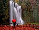 Natural park monasterio de piedra Spain