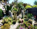 Jardin exotique d'eze France
