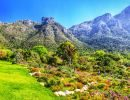 Kirstenbosch national botanical garden rpa