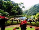 Jardin de balata France