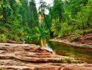 Oak creek canyon USA