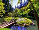 Nitobe memorial garden canada