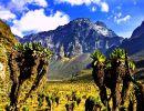 Rwenzori national park Uganda