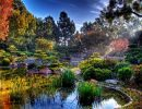Earl burns miller japanese garden USA