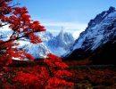 Cerro torre argentina chile