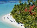 Sabor del Caribe