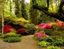clyne gardens wales
