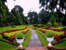 peradeniya botanical gardens sri lanca
